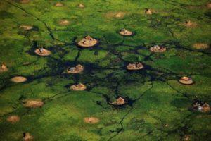 Village dans les marais - Sud Soudan © Yann Arthus-Bertrand